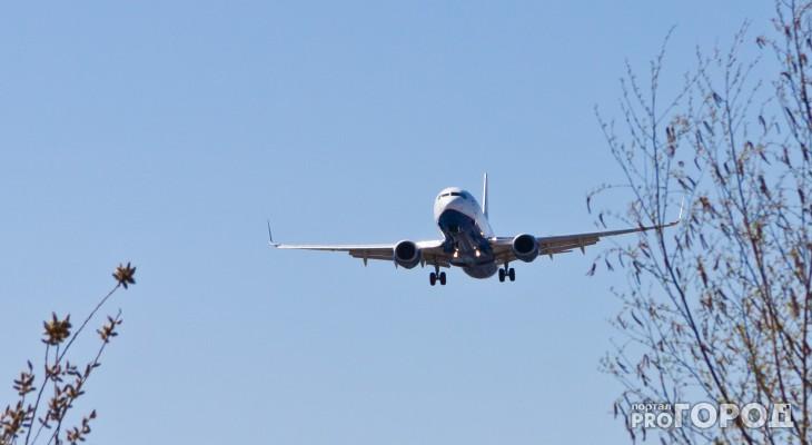 Самолет из Чебоксар не смог приземлиться в Москве из-за грозы