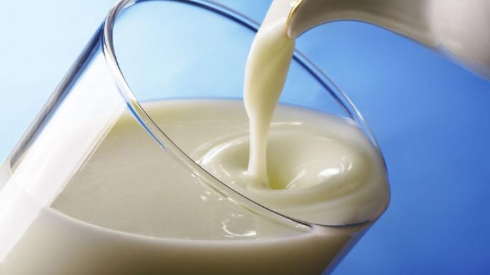Безопасность чувашского молока оставляет желать лучшего