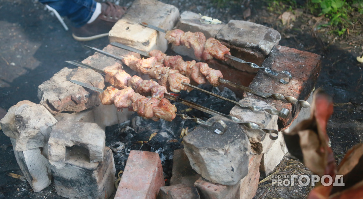 Жителям Чувашии запретили в лесу стрелять и делать шашлыки