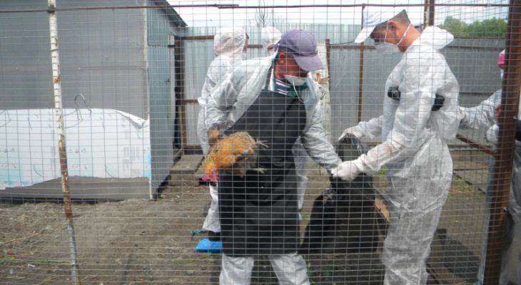 Еще в одной чувашской деревне объявили карантин