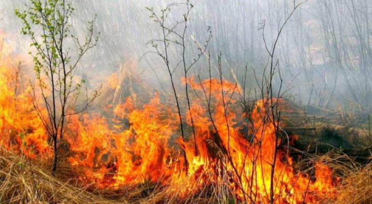 В Чувашии на три дня объявили 4 класс пожарной опасности