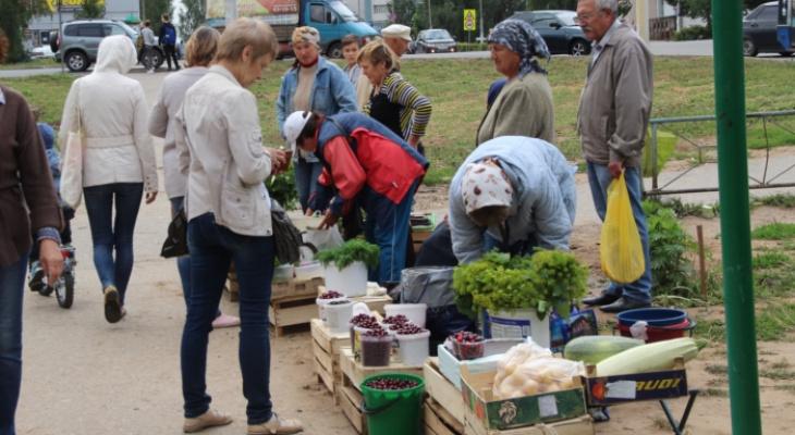 В Новочебоксарске чиновники взялись за стихийный рынок, где торгуют бабушки