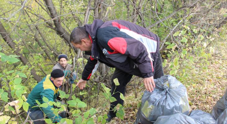 В Чебоксарах в популярных для сброса мусора местах появятся видеокамеры
