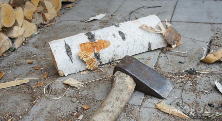 В Чувашии женщина ударила мужа поленом по голове