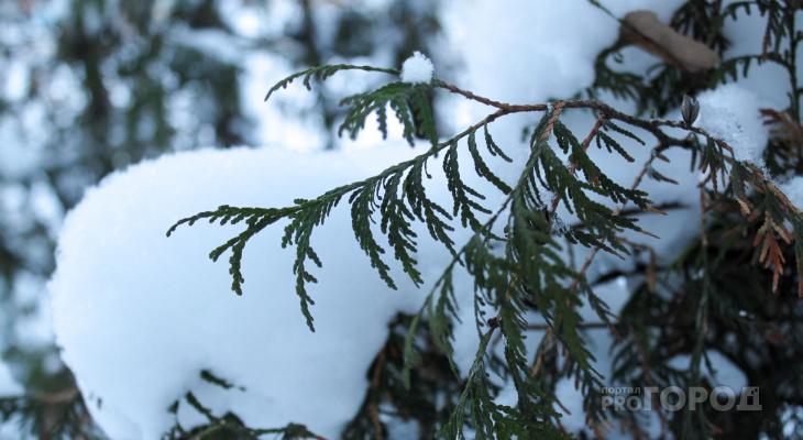В Батырево ударили 26-градусные морозы