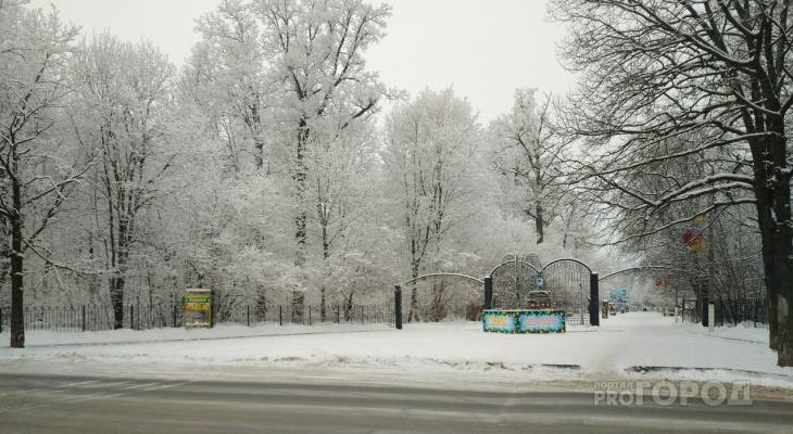 В роще Новочебоксарска умер лыжник