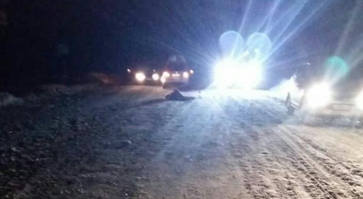 В Канашском районе насмерть сбили женщину с дочерью