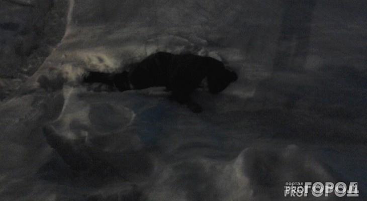 В Вурнарском районе возле своего дома насмерть замерзла женщина