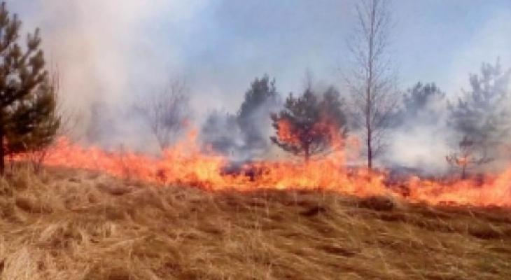 В Чувашии при сжигании сухой травы погибли два человека