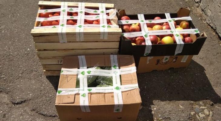 В Чебоксарах уничтожили 134 килограмма продуктов без документов