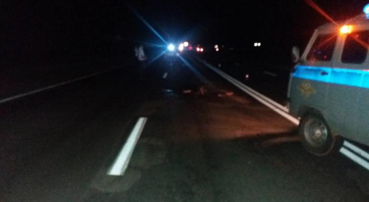 В Козловском районе мужчина шел по автодороге и погиб под фурой