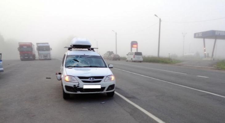 """В Чувашии водитель """"Лады"""" не увидел пешеходов из-за тумана и сбил их"""