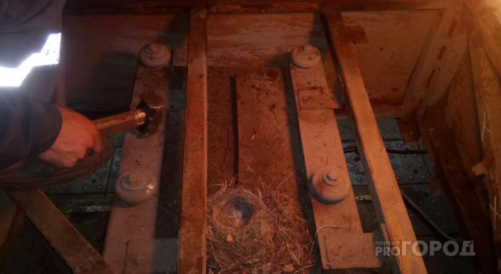 В Чебоксарах в полу троллейбуса обнаружили сюрприз