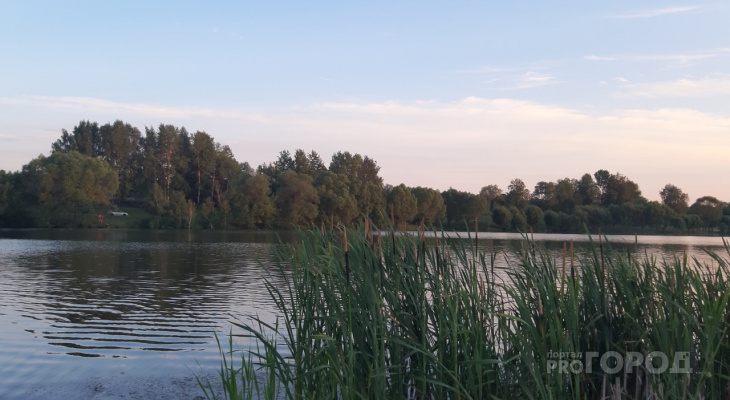 В пруду чувашской деревни утонул мужчина