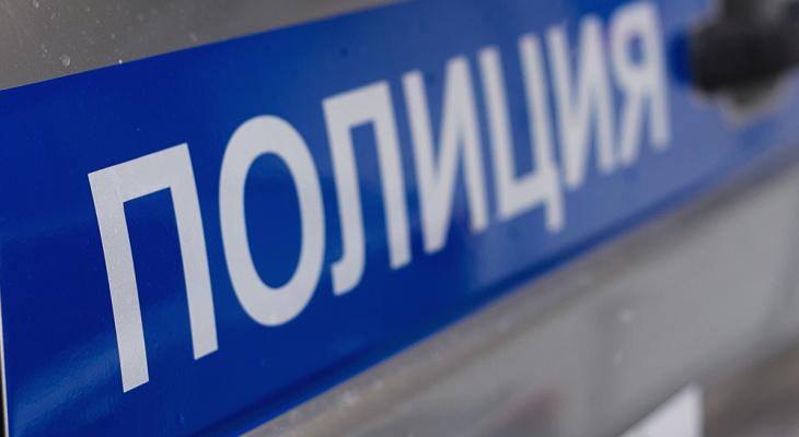 В Чувашии сотрудница кафе заплатит 30 тысяч рублей за продажу алкоголя подростку