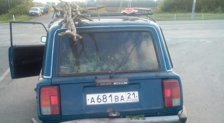 В Чувашии пьяного водителя выдал арбуз