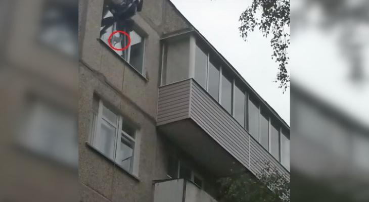 В Чебоксарах достали застрявшего в окне кота, спустившись на веревке