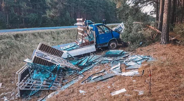 В Чувашии водитель грузовой ГАЗели выехал в кювет и погиб