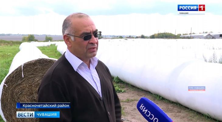 Красночетайские фермеры придумали свой способ увеличить надои молока