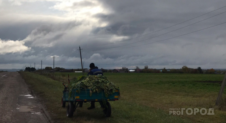 В России сократили рабочую неделю для сельских женщин