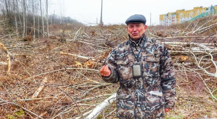 Рядом с Лакреевским лесом массово вырубили молодые березы