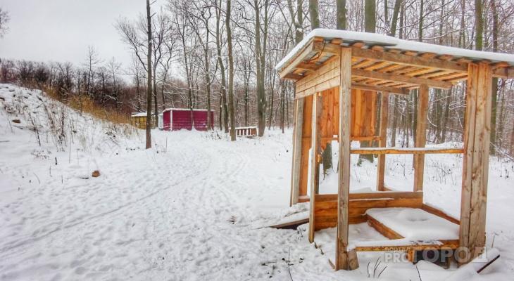 После строительства Кадетского корпуса в лесу остались туалеты и бытовки