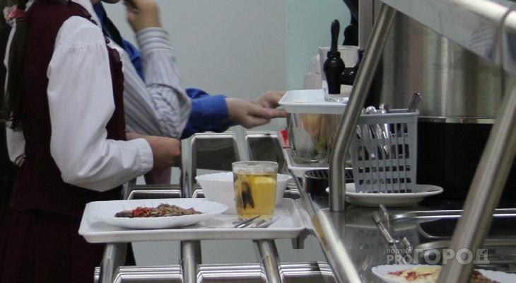 Бесплатное питание для школьников Чувашии нужно будет ждать три года