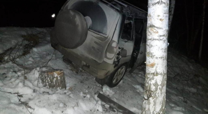 Мужчина на Chevrolet врезался в дерево и убежал в лес от инспекторов