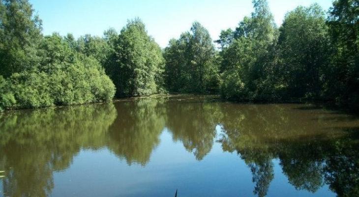 Житель чувашской деревни утонул в пруду, тело доставали сельчане