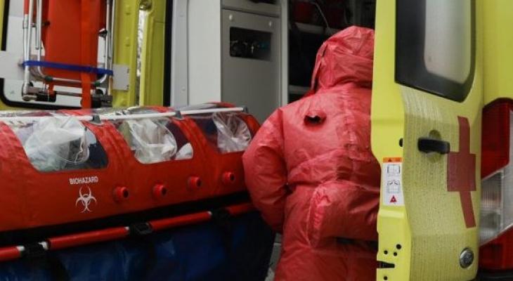 Активными в Чувашии остаются два очага заражения, новых не обнаружили