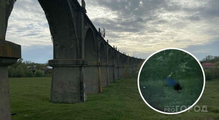 Ночной концерт на Мокринском мосту обернулся гибелью фотографа