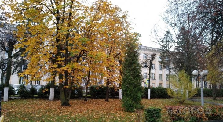 Студентов ЧГПУ частично перевели на дистанционное обучение