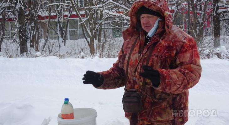 Житель Чувашии бросил московские стройки и завел шесть коров: теперь он молочный фермер