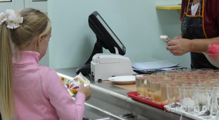 В Козловском районе школьников из многодетных семей не кормят бесплатно и копят долги