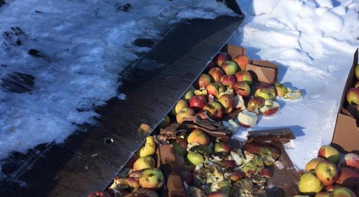 В Канаше раздавили почти тонну импортных яблок