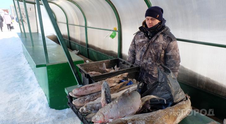 """Рыбак второй раз попался чиновникам за торговлю уловом: """"У меня двое детей, а это единственный доход"""""""