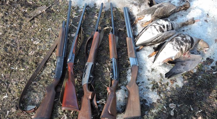 В Чувашии открывается сезон охоты на дичь
