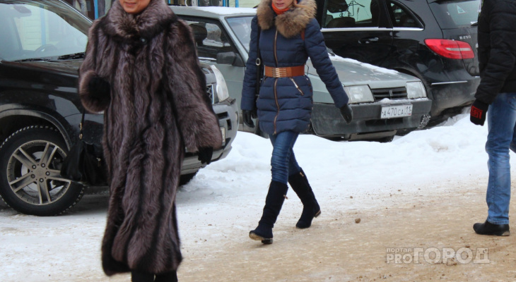В Чебоксарах многодетная мама отдала за несуществующие водительские права около 30 тысяч рублей