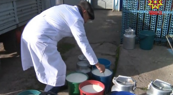 Снижение закупочных цен на молоко ударило по жителям семи районов Чувашии