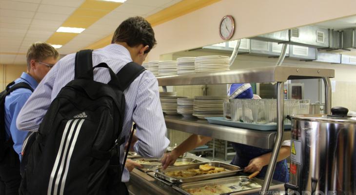В курином мясе, купленном для школьных обедов, нашли антибиотики