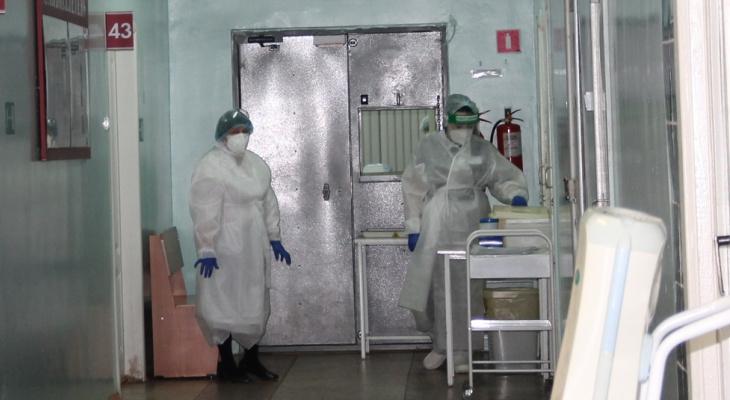 За минувшую неделю в Чувашии от опасного вируса умерли 32 человека
