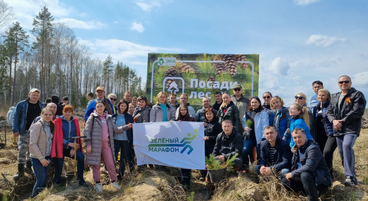 В преддверии Зеленого Марафона сотрудники Сбербанка помогли высадить 10 000 новых деревьев в Чувашии