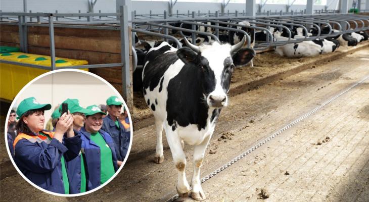 В одном из районов Чувашии построили ферму на 500 дойных коров