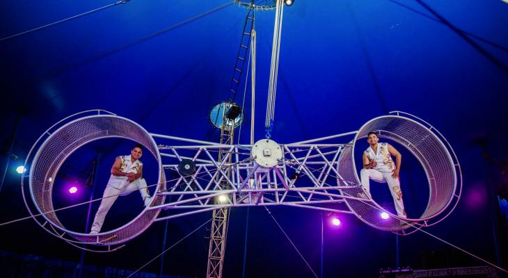 Смертельно опасный трюк с завязанными глазами, 40-килограммовые питоны и гости из Бразилии - в Чебоксары приезжает цирк-шапито