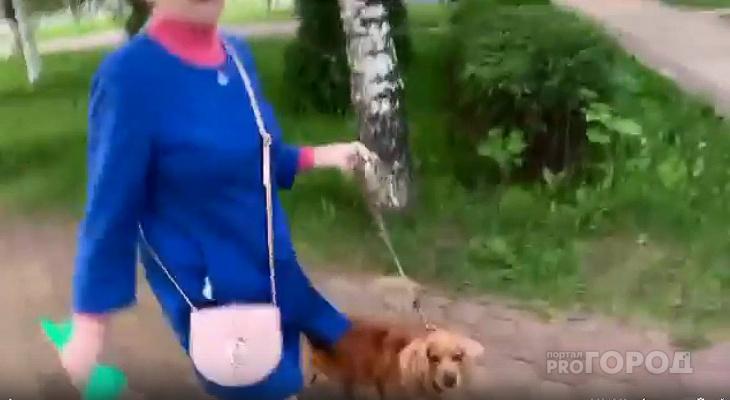 """В Чебоксарах собака на глазах хозяйки покусала 9-летнего мальчика: """"Пусть не бегает"""""""