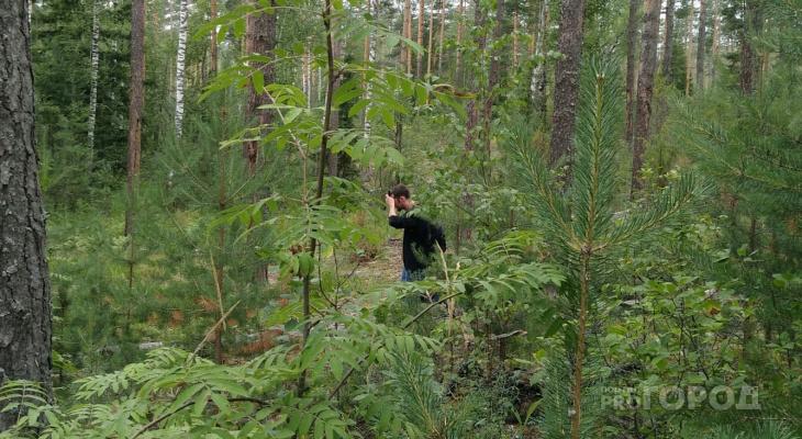 Спустя два дня полиция нашла пропавшего чебоксарца: он ночевал в лесу