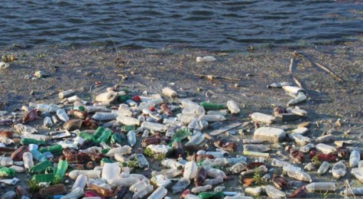 Берег Волги в Чебоксарах попал в список мест для уборки в рамках экопроекта