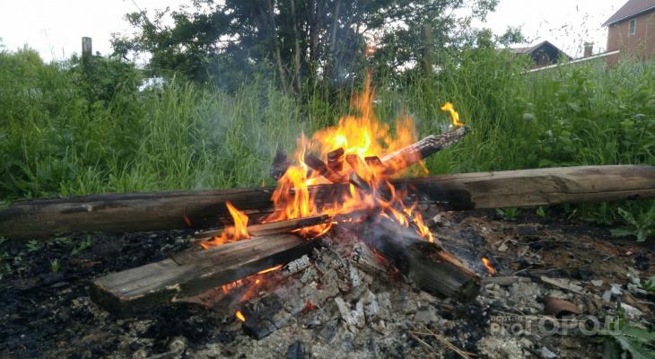 МЧС предложило разрешить сжигание травы на даче