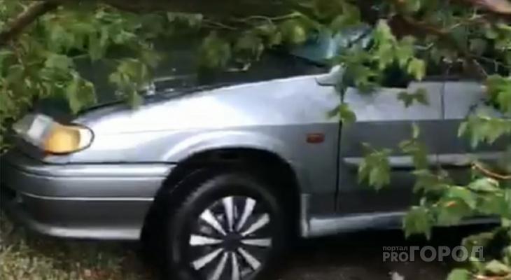 "В Чувашии после грозы дерево раздавило легковушку: ""Там колеса даже взорвались"""