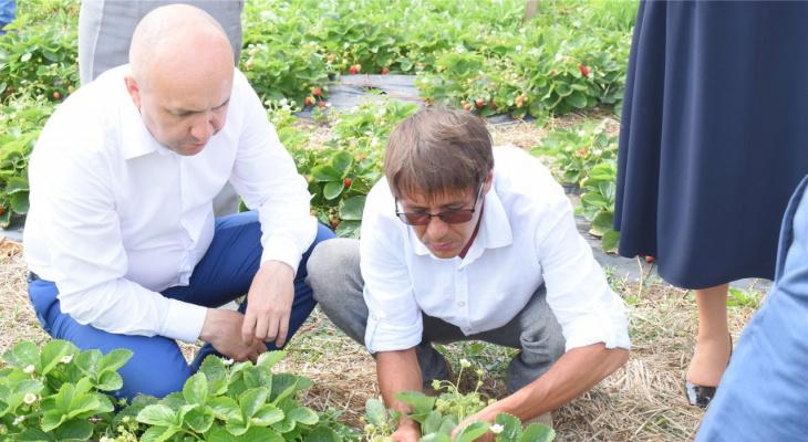 Сергей Артамонов осмотрел, как в Чувашии выращивают клубнику и разводят форель